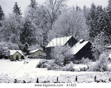 Farm House In Snow
