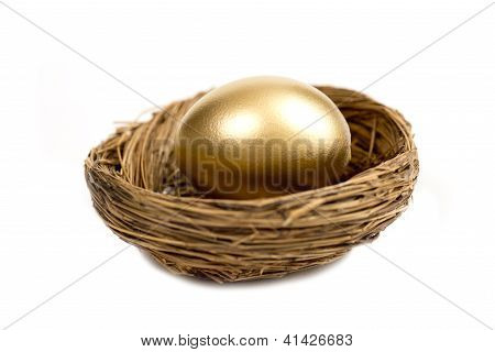 Golden Egg Laying In Nest Isolated On White