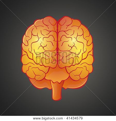 Graphic illustration of Brain