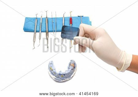 Dentist Checking An X-ray Of Human Teeth