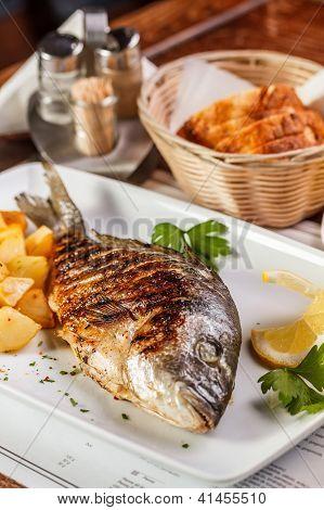 Grilled Dorado Fish