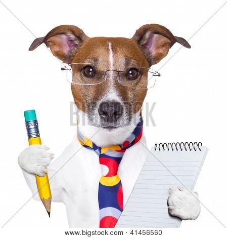 Secretario de perro