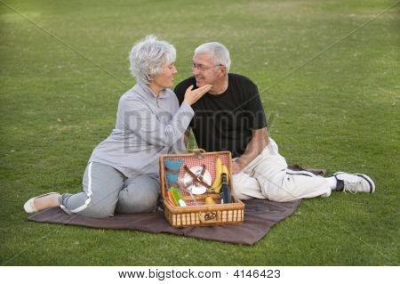 Senior Couple Picnic