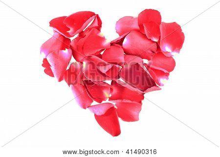 heart shape of red rose petals