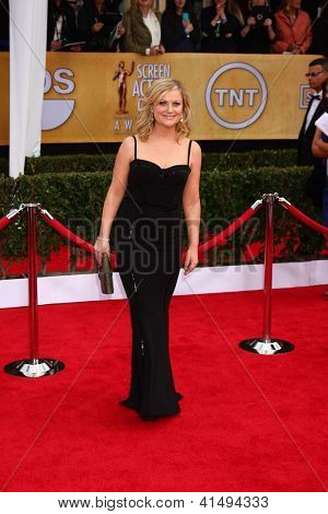 LOS ANGELES - JAN 27:  Amy Poehler arrives at the 2013 Screen Actor's Guild Awards at the Shrine Auditorium on January 27, 2013 in Los Angeles, CA