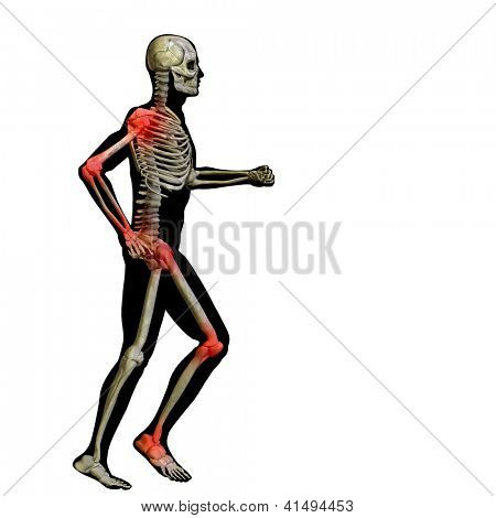 3D human or man with muscles and skeleton for anatomy or sport designs. A male isolated on black  background