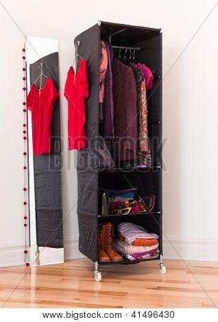Clothes Organizer With Clothing And Accessories