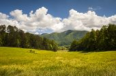 foto of cade  - Cades Cove Great Smoky Mountains National Park Spring Scenic Landscape and Tennessee vacation outdoor travel destination - JPG