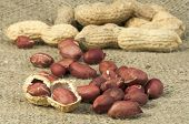 stock photo of testis  - Closeup Peanuts on burlap - JPG