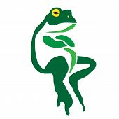 picture of amphibious  - Vector image of an frog on a white background - JPG