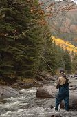 stock photo of trout fishing  - Fly Fisherman in a mountain stream with a fly rod - JPG