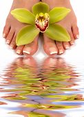 foto of nail salon  - Pedicured feet with beautiful orchid and water reflection - JPG
