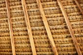 Structure Of Thatched Roof