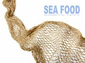 pic of fishnet  - Fishing net and easy removable text - JPG