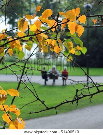Elderly People Relaxing In Autumn Park
