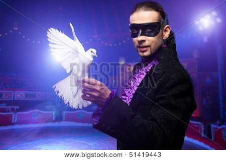 Young handsome brunette magician man in stage costume with his trained white dove on circus arena