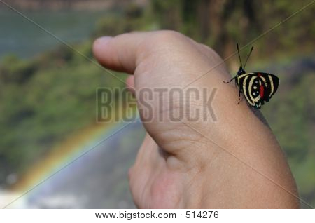 Rainbow Butterfly Hand