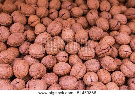 Ripe Walnuts In Shells Background