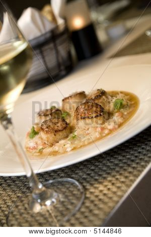 Seared Scallops On Risotto