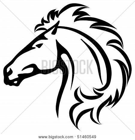 Wild Horse's Head