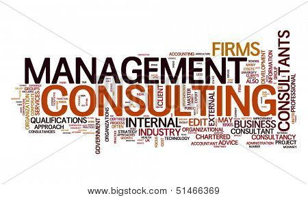 An image of a management consulting text cloud