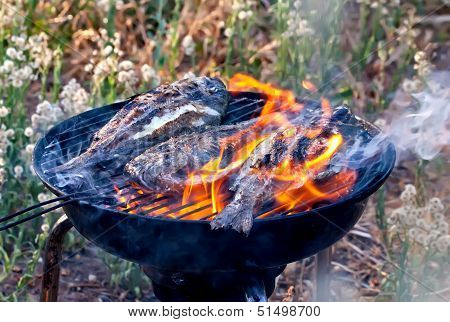 Sea Bream Fish Grilling On Bbq