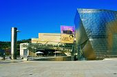 BILBAO, SPAIN - NOVEMBER 13: The Guggenheim Museum on November 13, 2012 in Bilbao, Spain. This pictu