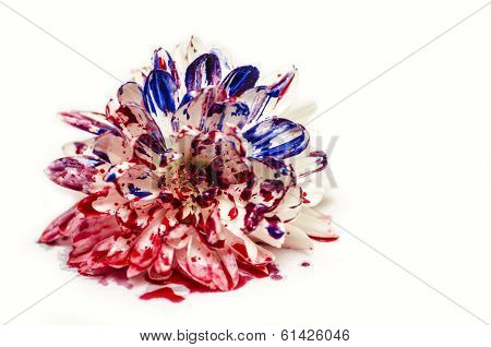 Blue Red Painted Flower