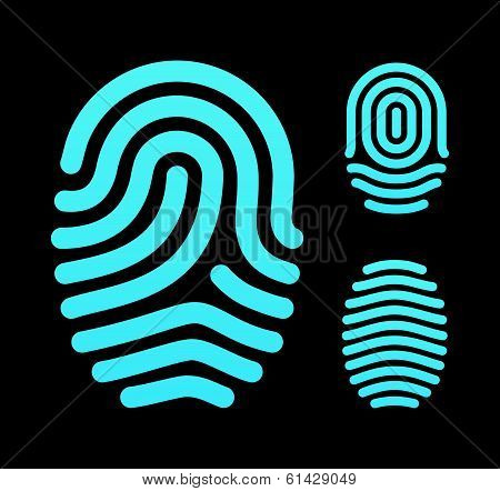 Fingerprint types, loop, whorl and arch.