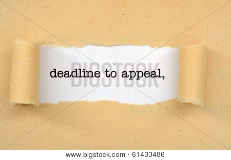 Deadline To Appeal