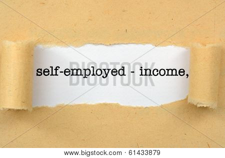 Self Employed - Income