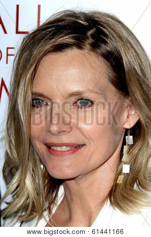 LOS ANGELES - MAR 11:  Michelle Pfeiffer at the Television Academy's 23rd Hall Of Fame Induction Gala at Beverly Wilshire Hotel on March 11, 2014 in Beverly Hills, CA