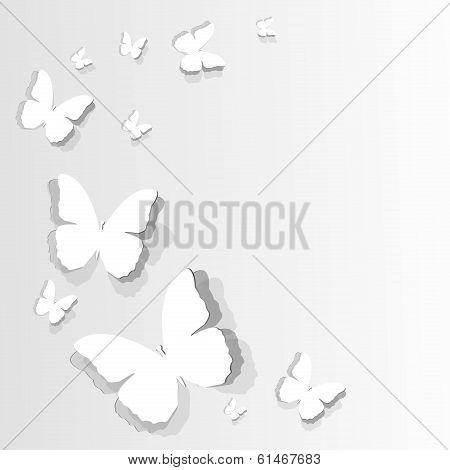 flitting paper butterflies