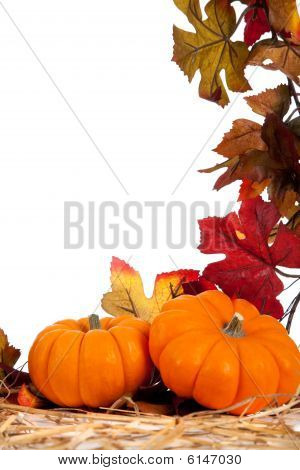 Assorted Fall Vegetables As A Background