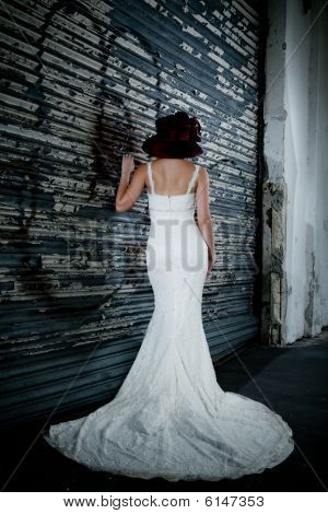 Bride and her dress