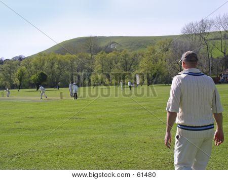 Cricket On Village Green