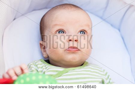 Sweet Newborn Portrait