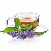Glass Cup Tea with Mint Leaf and Herbs Flowering, Isolated on White Background