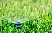 stock photo of sprinkler  - Automatic lawn sprinkler watering green lawn in sunny day - JPG