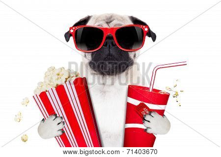 Movie Dog
