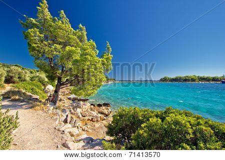 Idyllic Turquoise Beach In Croatia