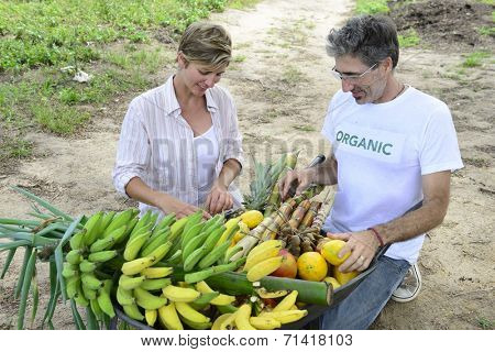Organic farming: Customer buying fresh vegetables and fruits direct from local farmer