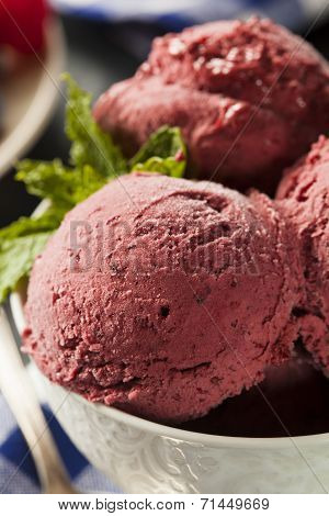 Homemade Organic Berry Sorbet Ice Cream