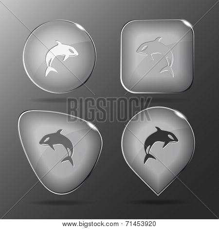 Killer whale. Glass buttons. Raster illustration.
