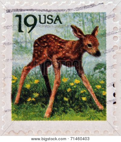 UNITED STATES OF AMERICA - CIRCA 1991: A stamp printed in USA shows Roe Deer (Capreolus capreolus)