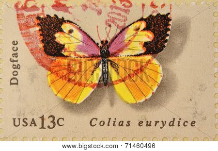 UNITED STATES OF AMERICA - CIRCA 1977: A Stamp printed in USA shows the Dogface Butterfly circa 1977