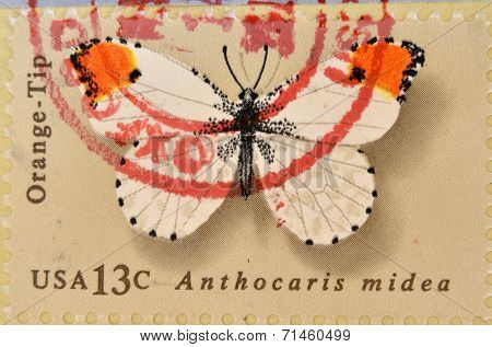 UNITED STATES OF AMERICA - CIRCA 1977: A Stamp printed in USA shows the Orange Tip Butterfly