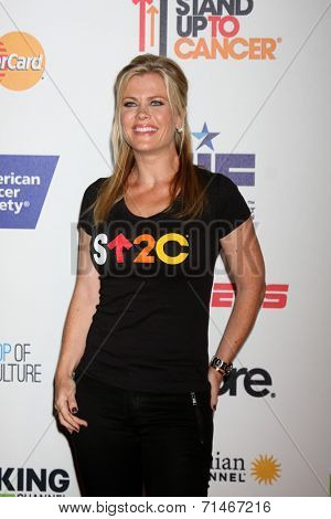 LOS ANGELES - SEP 5:  Alison Sweeney at the Stand Up 2 Cancer Telecast Arrivals at Dolby Theater on September 5, 2014 in Los Angeles, CA