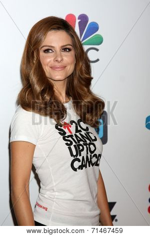 LOS ANGELES - SEP 5:  Mario Menounos at the Stand Up 2 Cancer Telecast Arrivals at Dolby Theater on September 5, 2014 in Los Angeles, CA