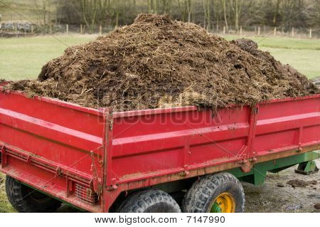 Cart Load Of Muck